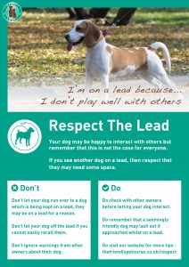 Respect The Lead Poster - I Do not Play Well With Others
