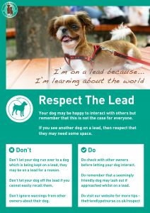Respect The Lead Poster - I am Learning About The World