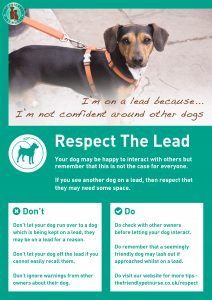 Respect The Lead Poster - I am Not Confident Around Other Dogs